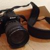 一眼レフカメラを買いました。旅に1ヶ月連れて思ったこと。
