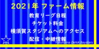【横浜DeNA】2021年教育リーグ日程と料金、横須賀スタジアムへのアクセス【2軍】