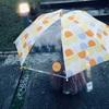 (日記) 夕方の雨と「死」