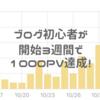 ブログ初心者が開始3週間で1000PV達成するためにしたことは?