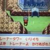 駆け上がれ!トレーナータワー!【ニビ遊園地】【ハピナス道場】
