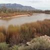 7度目のニューメキシコ補足写真⑨(4/11  Santa Ana Pueblo Corinado State Momument, Vinaigrette