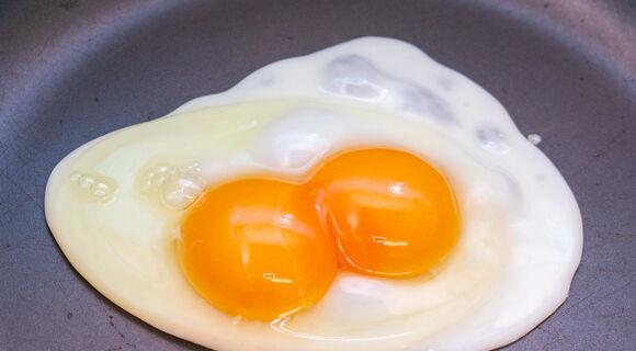 黄身が2個入ってて濃厚──双子の玉子「二黄卵」を知ってますか?