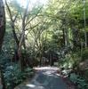 春秋山荘サロン〜お茶で遊ぶ〈誂え生菓子:楳心果・馬場英豪〉