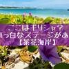 【茶花海岸】穴場なビーチ!ギリシャ風のステージがインスタ映え
