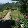 十津川村玉置神社と世界遺産の小辺路