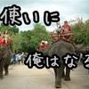就活生は象使いになれ!