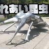 石川県ふれあい昆虫館のお正月。カブクワGO!で甲虫ゲットだぜ!