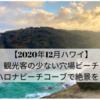 【2020年12月ハワイ】観光客の少ない穴場ビーチ〜ハロナ・ビーチ・コーブで絶景を!