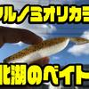 【レイサム×HAMA】プロショップとのコラボカラー「マルノミ 北湖のベイト」通販サイト入荷!