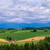 夏の美瑛町 麦稈ロールのある風景その1