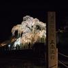 (昔話)日本三大桜の一つ 三春滝桜