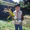 チャウス田んぼの学校~収穫祭【活動レポート】