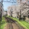 SSK (SunnySide of Kyoto)(+734/1099)