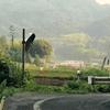 鴻池(岡山県津山)