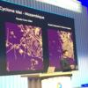 Google Cloud Next '19 San Francisco に行ってきました!⑤ ~ AI/ML関連のGCPサービスの事例紹介 ~