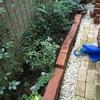 レンガを積んだだけの花壇を広げる。