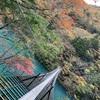 静岡県 寸又峡『夢の吊橋』紅葉と絶景の旅