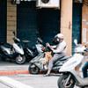 台湾のイヌとネコ。