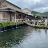 日本の原風景が感じられる名水の里!世界遺産「忍野八海」へ【山梨】