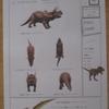 恐竜新聞第21号の完成