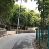 天王山(367m)周回と山崎蒸溜所チラ見、「司馬遼太郎の言葉」読了