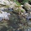 清流川あそび~ちょいと釣りも