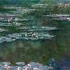 高田公園のハスといもり池のスイレン