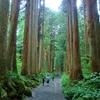 戸隠神社五社巡りのポイントは?長野一人旅におすすめのホテルと御朱印