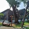 台湾の小さな街を歩く40〜嘉義さんぽ2・林業と共に栄えた嘉義の昔を懐かしむ
