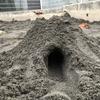 公園で砂場。もの凄く久しぶりに砂場でトンネル作った
