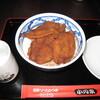 SGEPSS波動分科会2007@福井