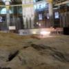 実際にある聖書史跡12  〜イサクを捧げた岩