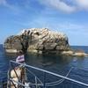タオ島2: sail rock