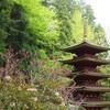 【奈良旅行】人が少ない穴場スポット「室生寺」「長谷寺」参拝してきた!~春の花まつり~