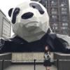 【生パンダを格安で見に行こう!】1日でまわれる四川満喫ツアー!おすすめプラン