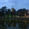 奈良公園を散策?!