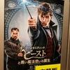 【映】ファンタスティック・ビーストと黒い魔法使いの誕生 ~何が面白いのかわからなかった~