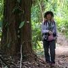 ベリーズ ジャングルの散策