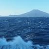 八丈富士登山と植物観察