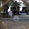 後半、半年の無病息災を祈る。賀羅加波神社 夏越の大祓い神事