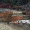 11月7日(ブドウ収穫・出荷準備)