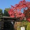 京都旅 11.27