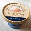 栃木旅行記⑤帰りはミレピーニのアイスと牛めし弁当。