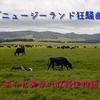 「ニュージーランド狂騒曲」~ あられ美幸のNZ移住物語 <プロローグ>