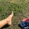 アサリの島流し 324日目 - 南の島の年越しは延長15回の夏休み