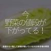 1131食目「今、野菜の値段が下がってる!」高値から一転して安値が続いている2020年冬場の野菜