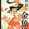 青春アドベンチャー 金魚姫(全10回)