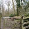 ヨーロッパ編 UK(7) Windermere Orrest Headから湖畔のView spot経由、市街地散歩の話。