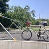 自転車で筑波山登ってみた。